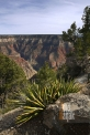 USA_AZ Grand Canyon_North (2)